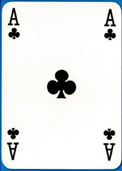 d13630cA
