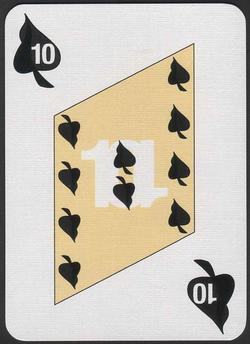 d13631s10