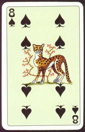 Kashmir_Playing_Cards_Eight_of_Spades