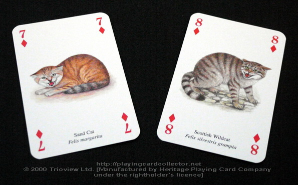 Wild-Cats-Playing-Cards-Diamonds-7-8