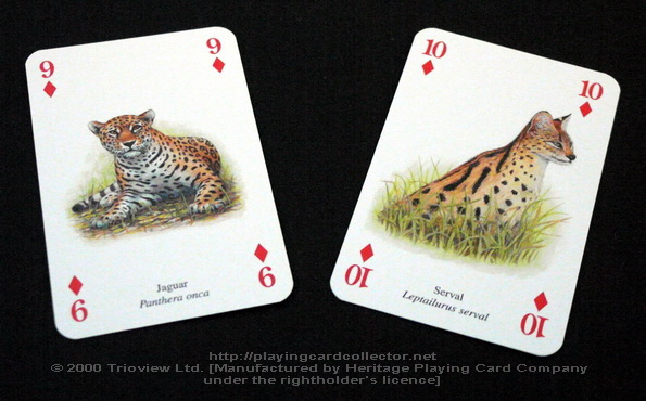 Wild-Cats-Playing-Cards-Diamonds-9-10