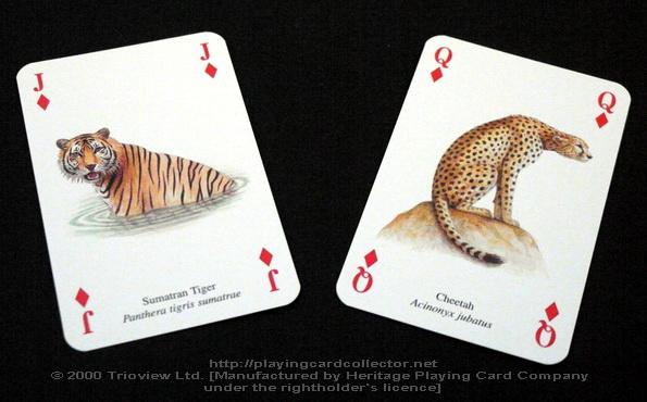 Wild-Cats-Playing-Cards-Diamonds-J-Q