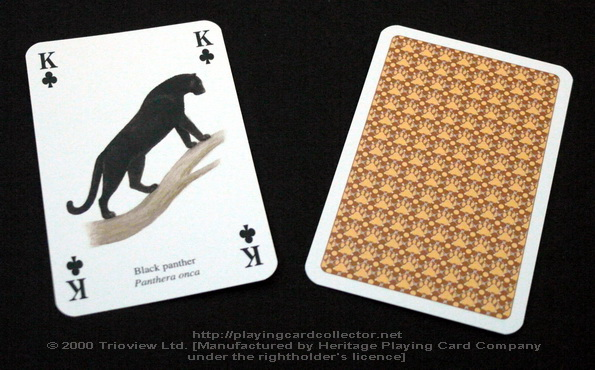 Wild-Cats-Playing-Cards-King-of-Clubs
