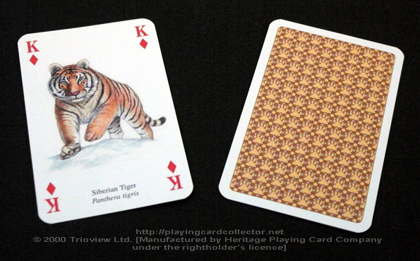 Wild-Cats-Playing-Cards-King-of-Diamonds