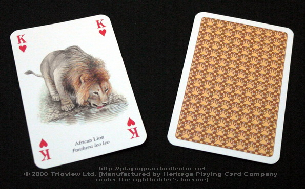 Wild-Cats-Playing-Cards-King-of-Hearts