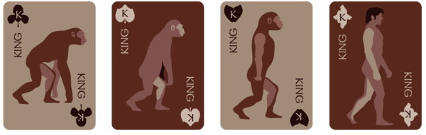 Evolve_Playing_Cards_by_Katie_Ann_Chan